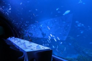 Thailand's Largest Aquarium Also Has The World's Largest Underwater Restaurant 1